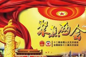 聚焦两会 | 云南代表委员热议民族团结进步示范区建设