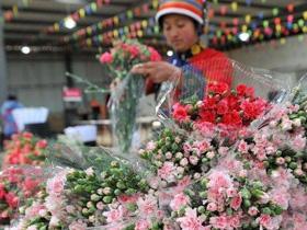 云南省财政积极支持文化产业园区建设