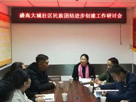 """云南民族大学专家""""把脉""""盛高大城社区创建工作"""