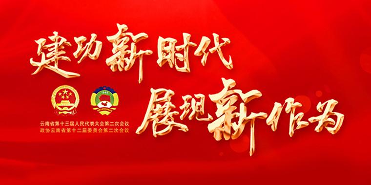云南省人大代表审议民族团结进步示范区建设条例草案 三大亮点引人关注