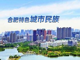刘慧:要打造具有合肥特色的城市民族工作之路