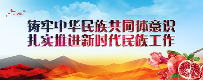 进一步做好城市民族工作 铸牢中华民族共同体意识