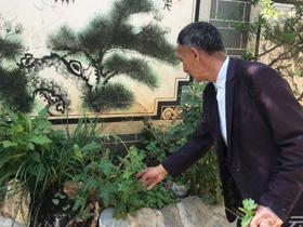 杨尚星:奔走在民族民间医药传承与创新的路上