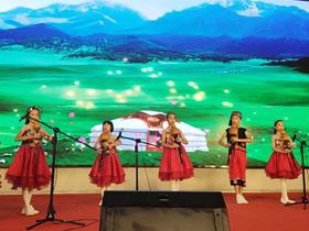 2019中国云南葫芦丝·巴乌文化艺术节专题音乐会圆满举办