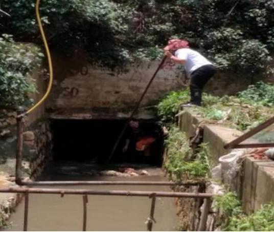 昆明市东骧社区开展洗菜河综合治理保护有成效